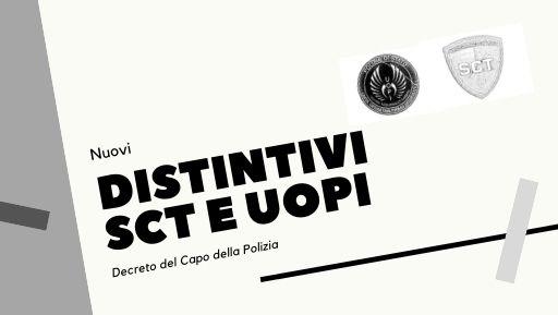Distintivi del servizio Controllo del Territorio e Unità Operative di Primo Intervento (UOPI).